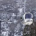 Photos: スキー天国