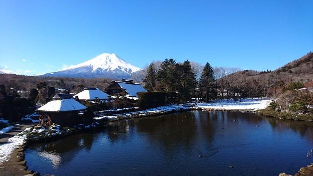 Photos: 忍野ブルー