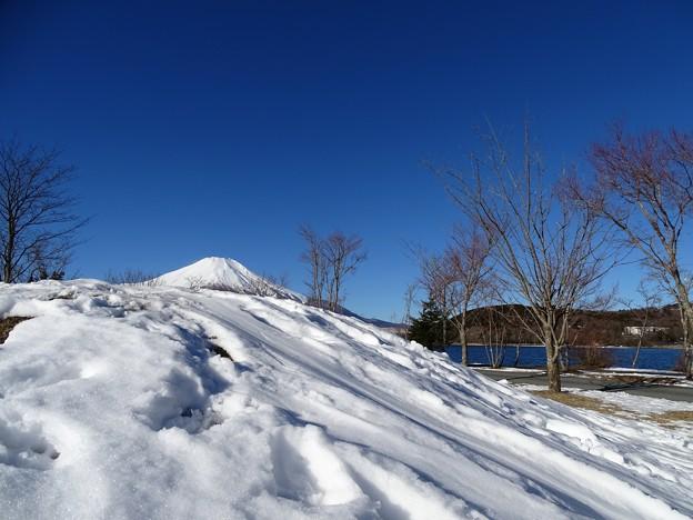 Photos: 雪富士