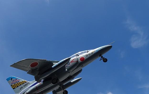 Photos: 青空T-4