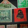 写真: 赤猿切手