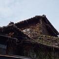 Photos: レトロな建物-善光寺 (文京区小石川)