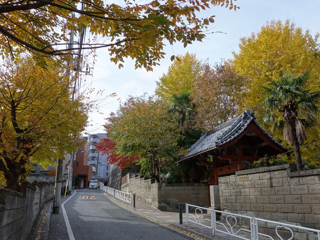 Photos: 善光寺坂 (文京区小石川)
