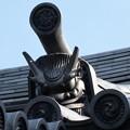写真: 寺社の街-鬼瓦 (新宿区須賀町)