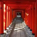 Photos: 穴守稲荷神社 (大田区羽田)