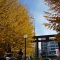 Photos: 女躰神社 (川崎市幸区幸町)