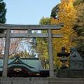 Photos: 氷川神社 (中野区東中野)