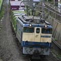 EF65-1121 『蘇我貨物』1091レ