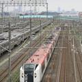 Photos: 2012.-7.21. E259系成田エクスプレス