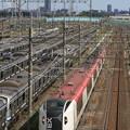 Photos: E259系 成田エクスプレス