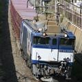 Photos: 【日々の演習】 73レ 鹿島貨物@幕張本郷のお立ち台1号