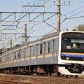 _MG_0030 Ai AF Zoom-Nikkor ED 70-300mm F4-5.6D の作例