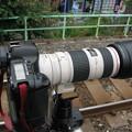 EF 80-200mmF4LIS+Extender 1.4x II