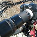 Photos: Carl Zeiss Sonnar T* 2,8/180mm+Extender 1.4x II