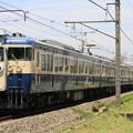 Photos: _MG_3956 スカ色115系による団体臨時列車「青い海」