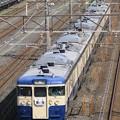 Photos: _MG_3979s2 スカ色115系による団体臨時列車「青い海」その2