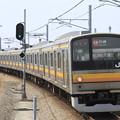 Photos: _MG_4545 南武線 205系快速