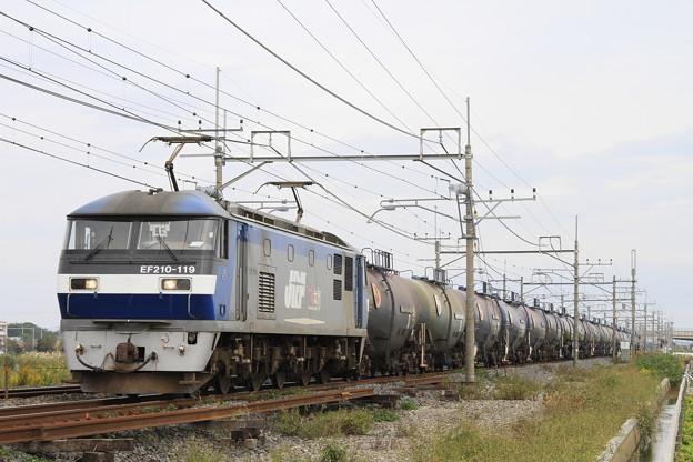 Photos: _MG_4670 EF210-119牽引の貨物列車(列番不明)