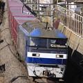 Photos: _MG_5235 『鹿島貨物』99レ