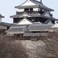松山城(2014.2.16.)