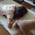 Photos: 2013年7月のちゃこ