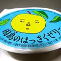 Citrus hassaku jelly Hiroshima Innoshima