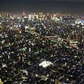 Photos: 東京スカイツリーより