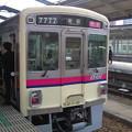 Photos: ふぃ~ば~