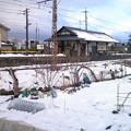 Photos: 中野松川