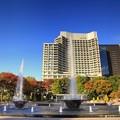 Photos: 噴水公園の紅葉