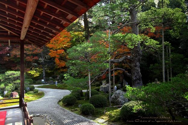 Photos: 鶴島