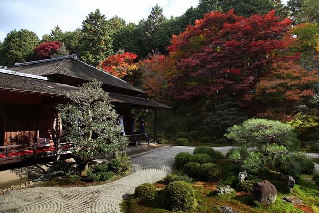 Photos: 小書院と亀島