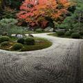 Photos: 鶴と亀と砂の波紋
