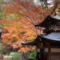 念仏寺の堂宇3