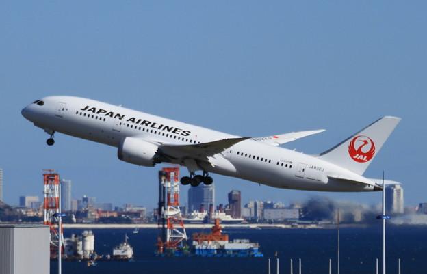 Photos: Dreamliner
