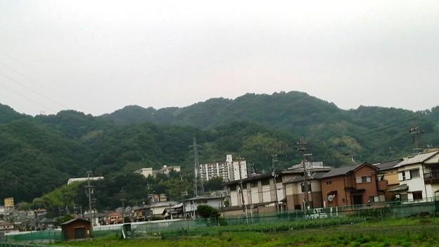高安山・恩智川畔より (2)