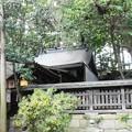 Photos: 御霊神社(鳥居川地区) (3)