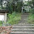 Photos: 茶臼山古墳 (6)