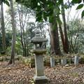 Photos: 茶臼山古墳 (7)・伝大友皇子塚