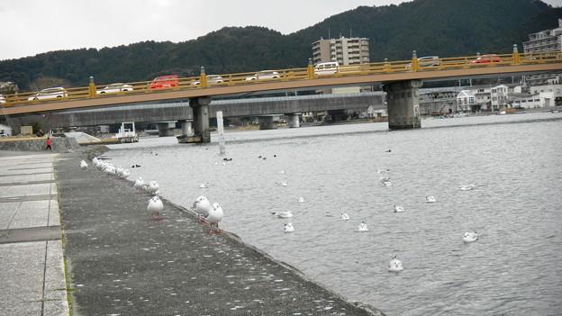 瀬田の唐橋 (3)