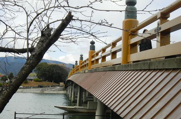 瀬田の唐橋 (8)