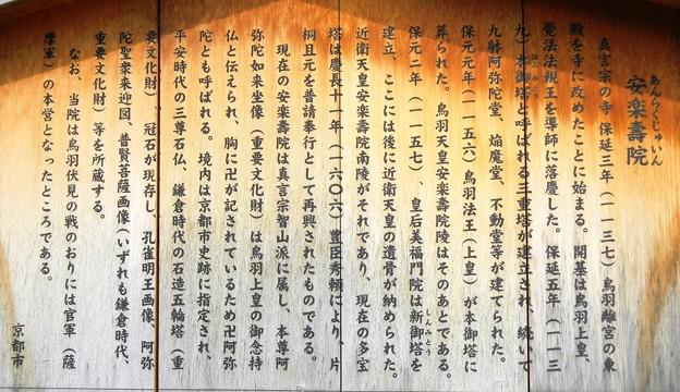 011安楽寿院