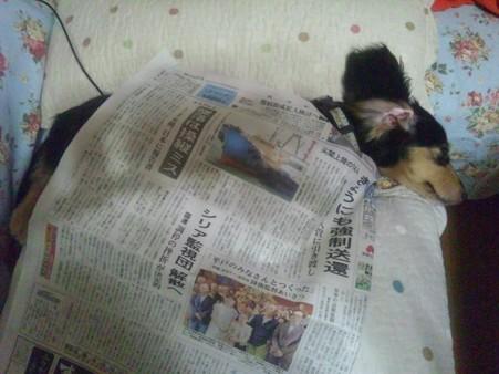新聞は、意外と心地いい?
