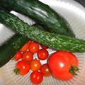 Photos: 野菜の収穫