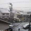 Photos: 成人の日は雪