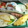 Photos: ドバイ→成田 機内食