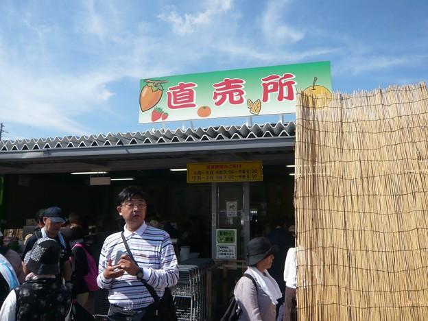 P1310135道の駅「筆柿の里・幸田」