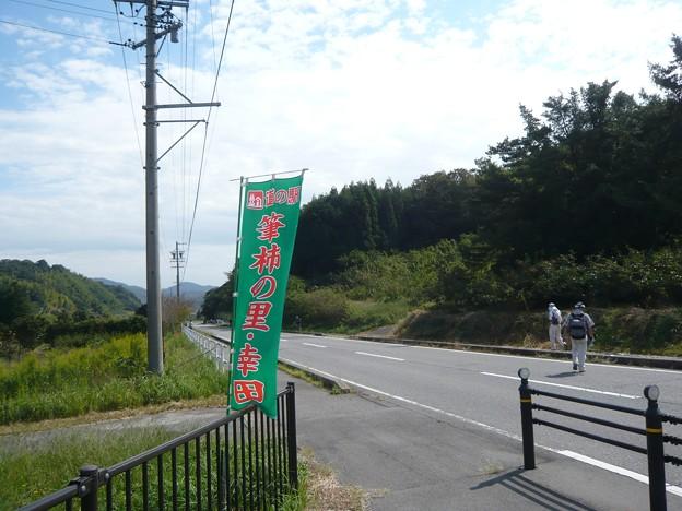 P1310140筆柿の里・幸田