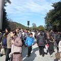 Photos: P1320629内宮