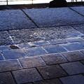Photos: 歩道凍結!